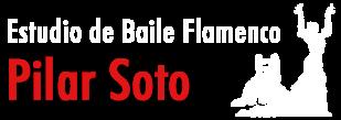 ESTUDIO DE BAILE FLAMENCO PILAR SOTO - MÁLAGA