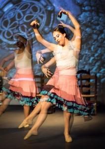 Flamenco 2017-311