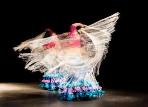 Flamenco 2017-318