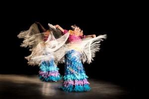Flamenco 2017-321