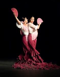 Flamenco 2017-327