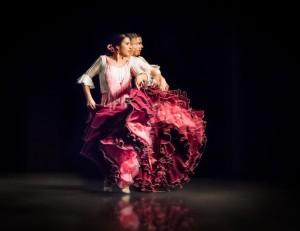 Flamenco 2017-334