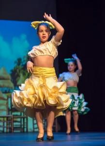 Flamenco 2017-338
