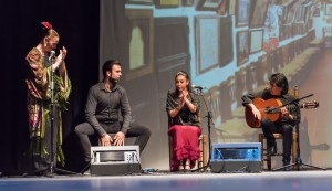 Flamenco 2017-342