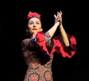 Flamenco 2017-343