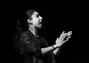 Flamenco 2017-347