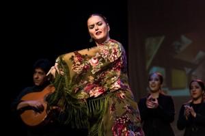 Flamenco 2017-349