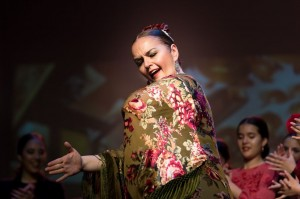 Flamenco 2017-351