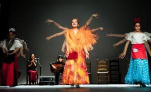 Flamenco 2017-352