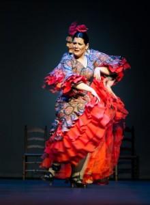 Flamenco 2017-361