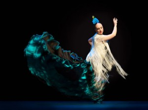 Flamenco 2017-362