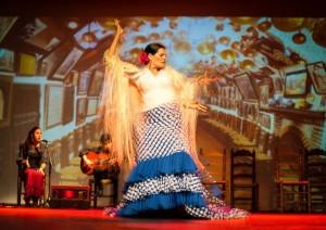 Flamenco 2017-365