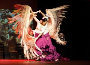 Flamenco 2017-367