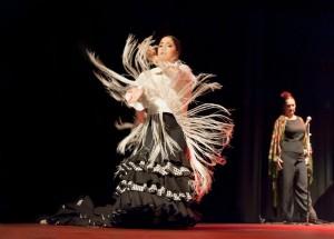 Flamenco 2017-368