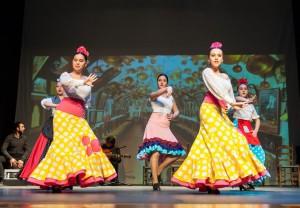 Flamenco 2017-372
