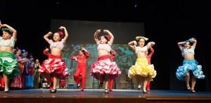Flamenco 2017-374