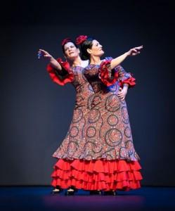 Flamenco 2017-381